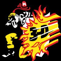 3dfire-primary (200x200)